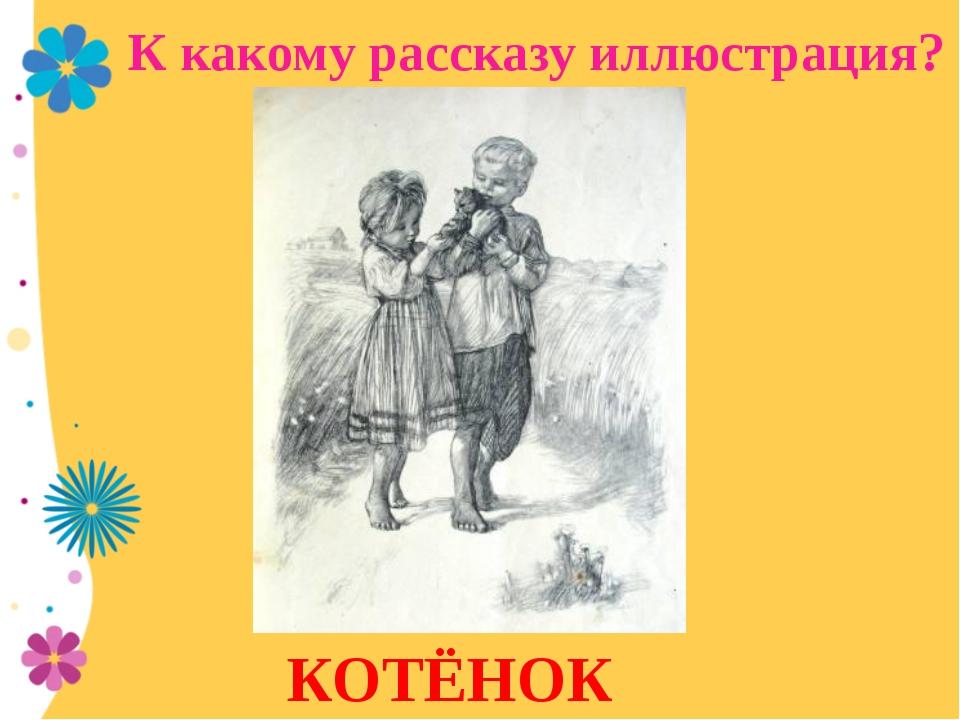 КОТЁНОК К какому рассказу иллюстрация?