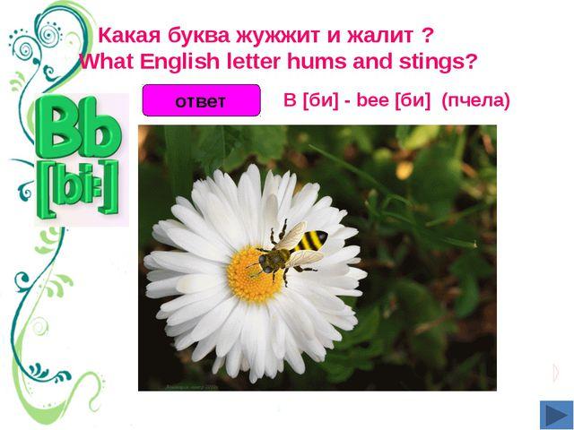 Какая буква жужжит и жалит ?  What English letter hums and stings? ответ B...