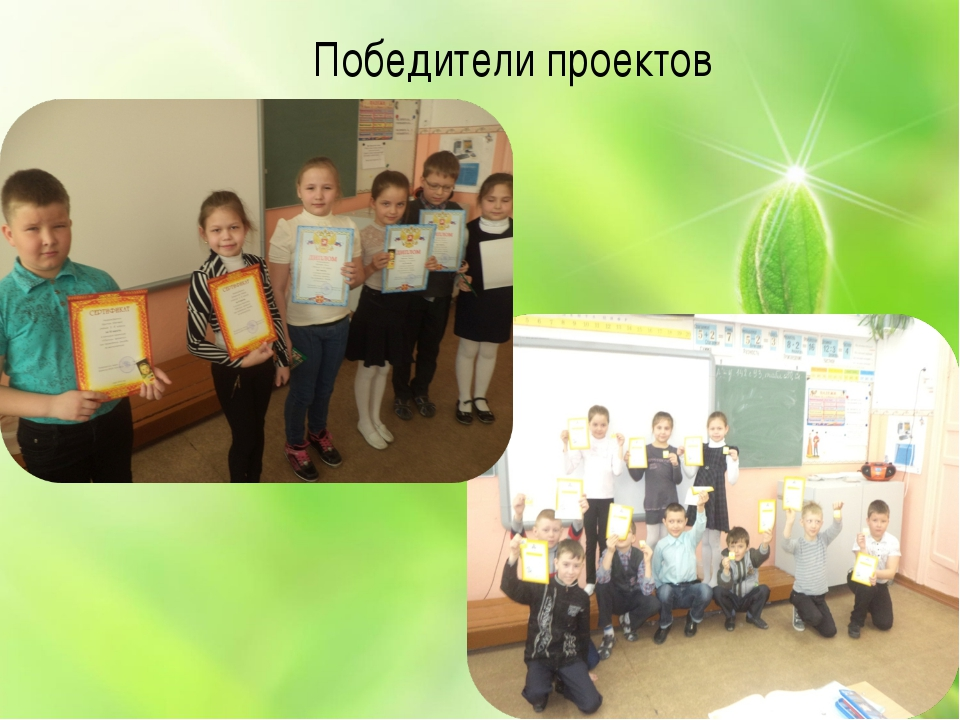 Победители проектов