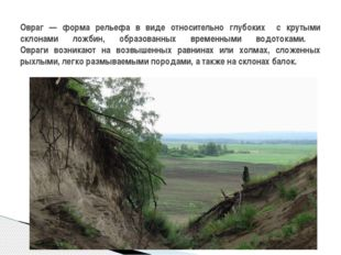 Овраг — форма рельефа в виде относительно глубоких с крутыми склонами ложбин,