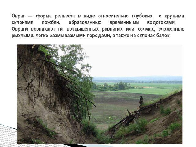 Овраг — форма рельефа в виде относительно глубоких с крутыми склонами ложбин,...