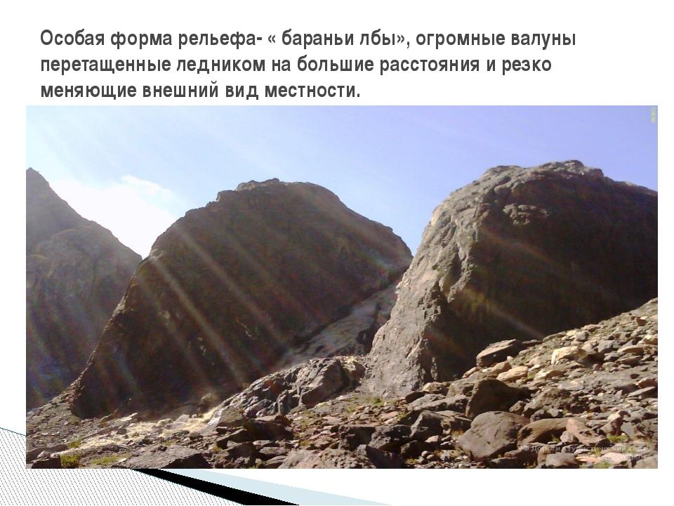 Особая форма рельефа- « бараньи лбы», огромные валуны перетащенные ледником...