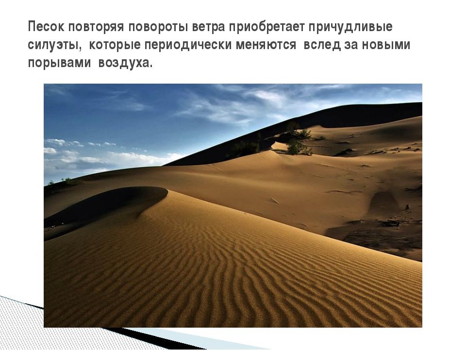 Песок повторяя повороты ветра приобретает причудливые силуэты, которые период...
