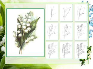 Делаем стебли объемными и на нижнем рисуем веточки, которые держат цветы лан