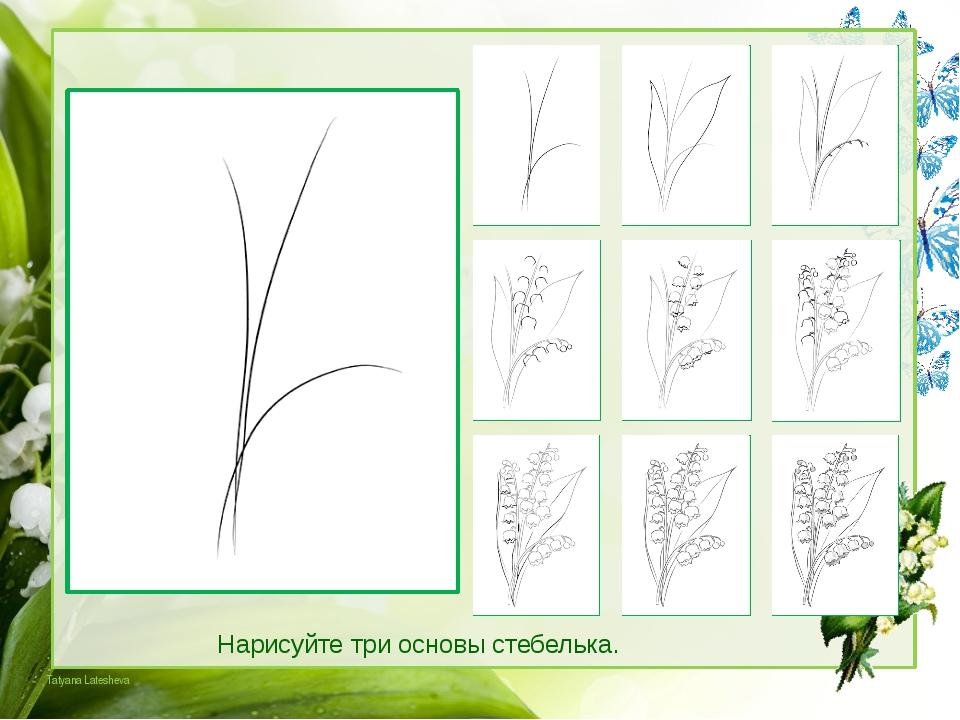 Рисуем шапочки цветков, а на конце нижней ветки — бутоны. Tatyana Latesheva