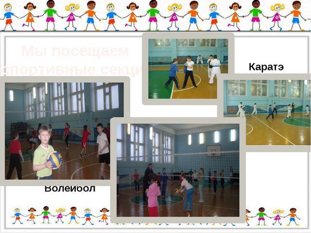 Мы посещаем спортивные секции Волейбол Каратэ