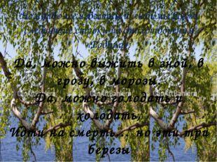 Но наиболее известны и любимы всеми следующие строки из стихотворения «Родина