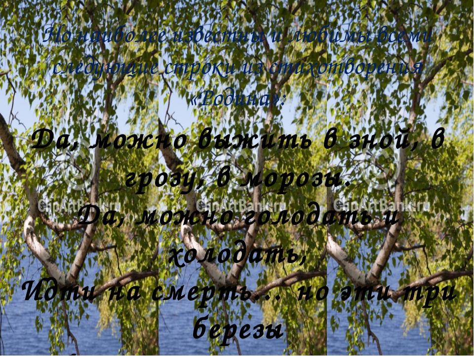 Но наиболее известны и любимы всеми следующие строки из стихотворения «Родина...