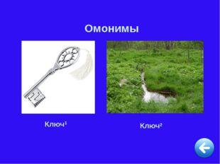 Омонимы Ключ1 Ключ2