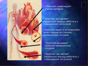 * Никотин вызывает сужение кровеносных сосудов * Никотин ведет к отложениям х