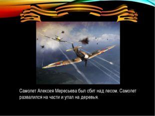 Самолет Алексея Мересьева был сбит над лесом. Самолет развалился на части и у