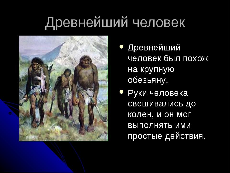 Древнейший человек Древнейший человек был похож на крупную обезьяну. Руки чел...