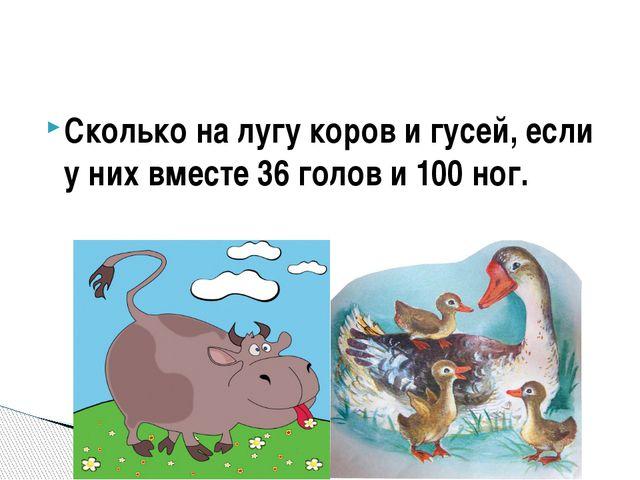 Сколько на лугу коров и гусей, если у них вместе 36 голов и 100 ног.