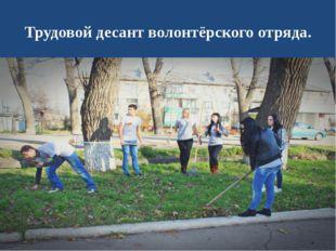 Трудовой десант волонтёрского отряда.
