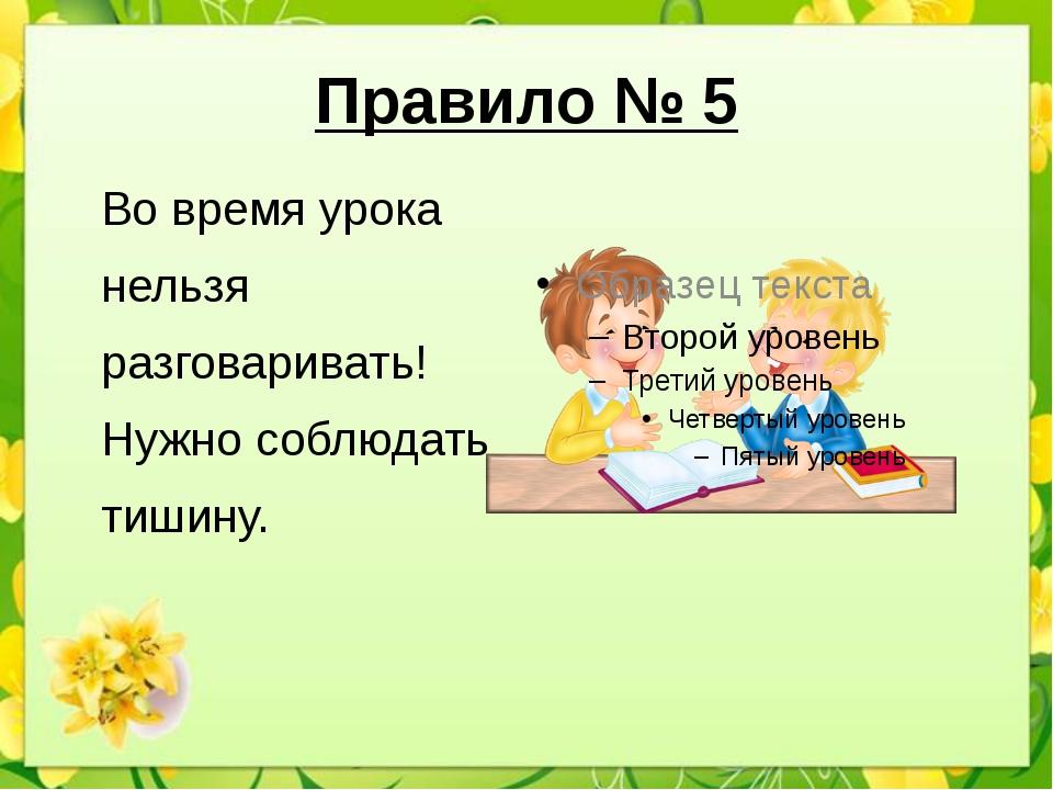 Правило № 5 Во время урока нельзя разговаривать! Нужно соблюдать тишину.