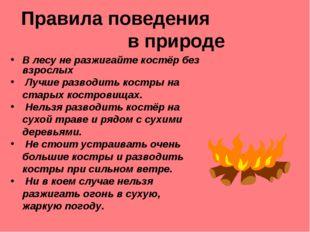 Правила поведения в природе В лесу не разжигайте костёр без взрослых Лучше ра