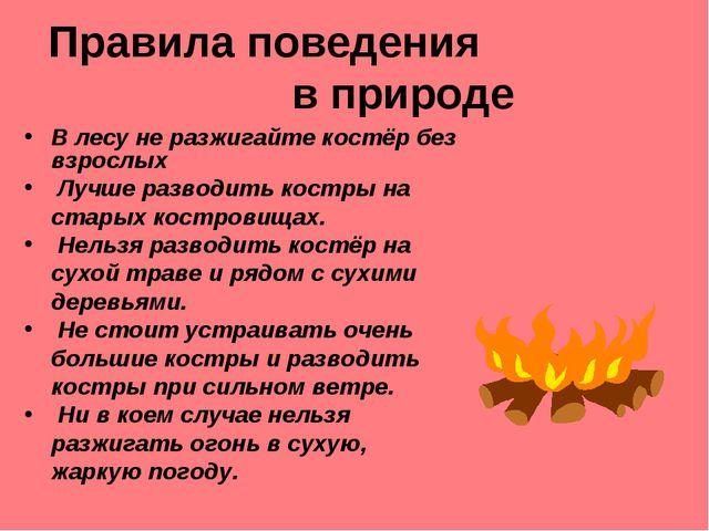 Правила поведения в природе В лесу не разжигайте костёр без взрослых Лучше ра...