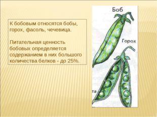 К бобовым относятся бобы, горох, фасоль, чечевица. Питательная ценность бобов