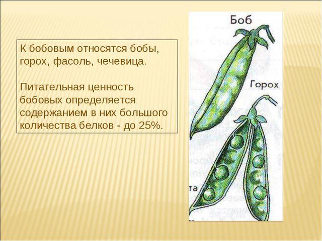 К бобовым относятся бобы, горох, фасоль, чечевица. Питательная ценность бобов...