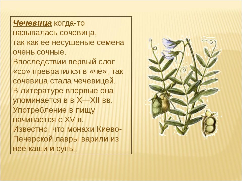 Чечевицакогда-то называлась сочевица, так как ее несушеные семена очень сочн...