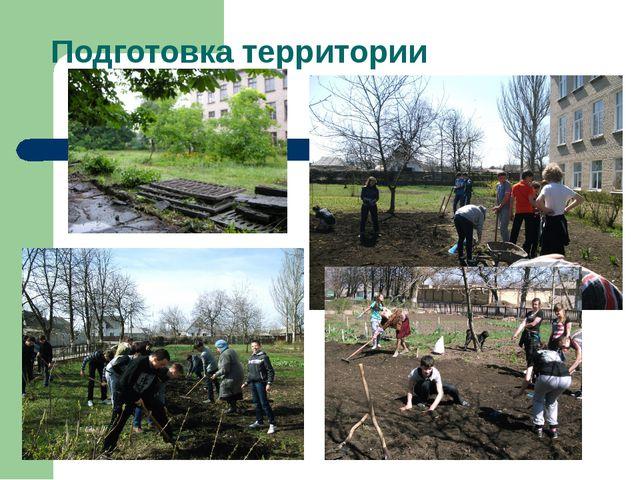Подготовка территории Очищение площадки