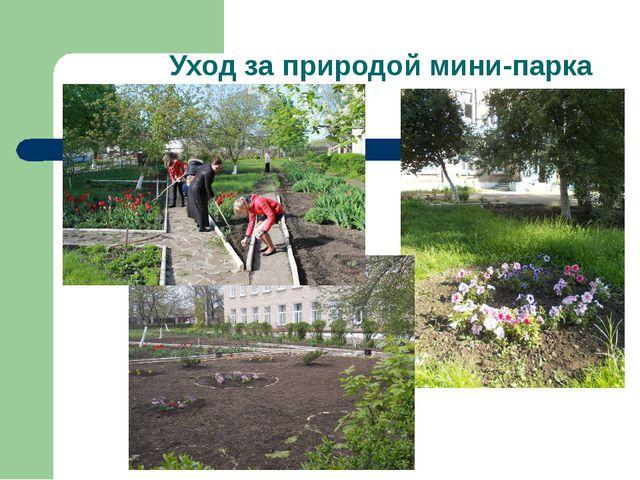 Уход за природой мини-парка