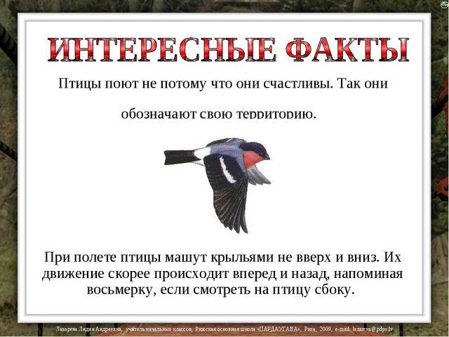 Птицы поют не потому что они счастливы. Так они обозначают свою территорию. П...