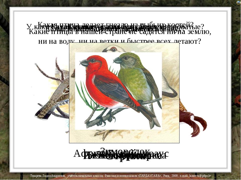 Какие птицы в нашей стране не садятся ни на землю, ни на воду, ни на ветки и...