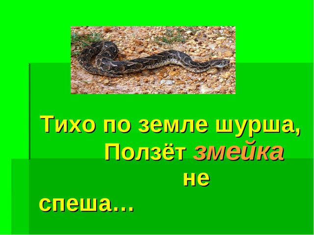 Тихо по земле шурша, Ползёт змейка не спеша…