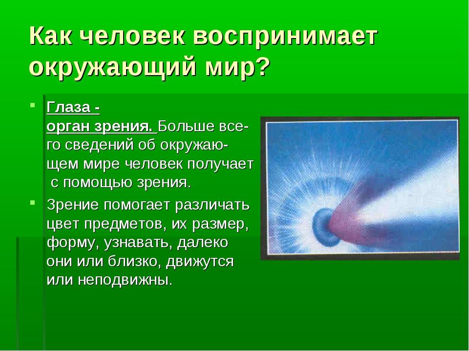 Как человек воспринимает окружающий мир? Глаза-органзрения.Большевсе-гос...