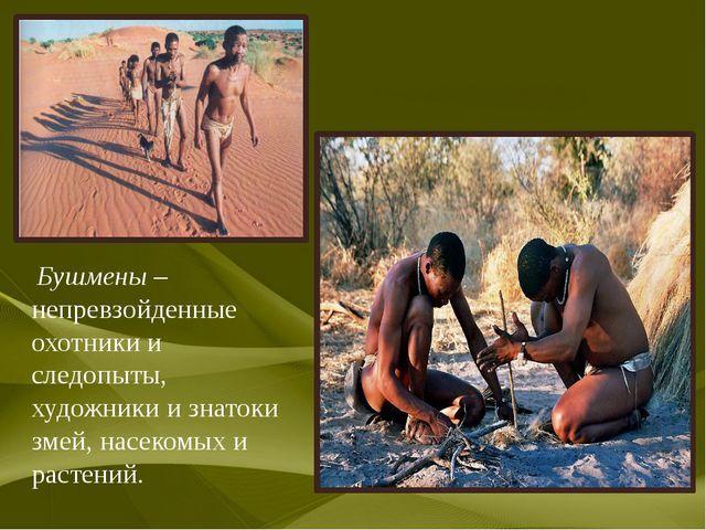 Бушмены – непревзойденные охотники и следопыты, художники и знатоки змей, на...