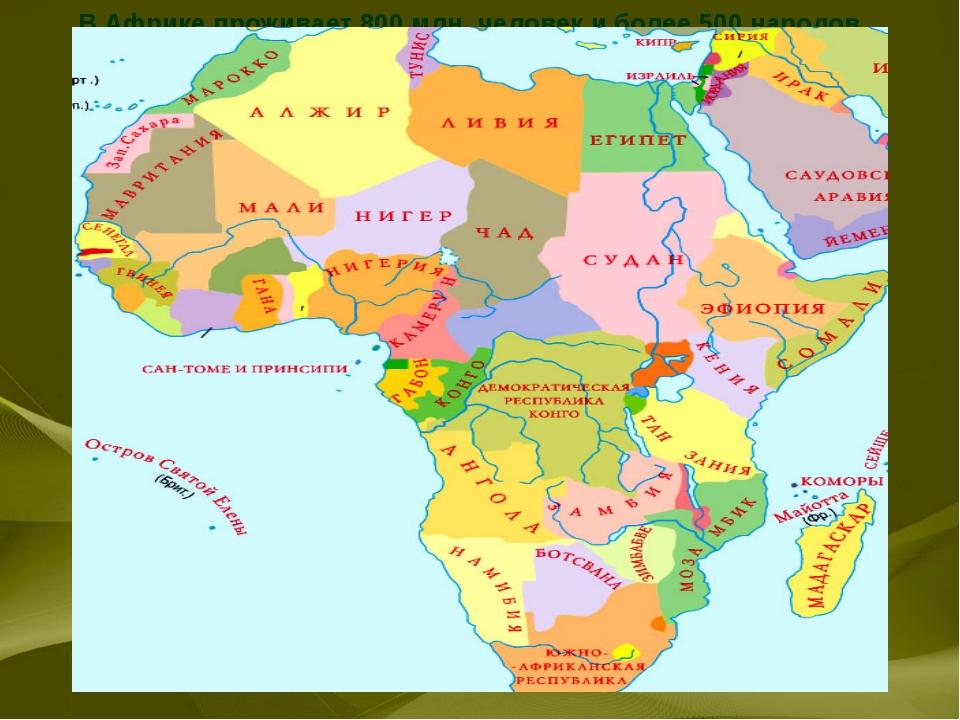 В Африке проживает 800 млн. человек и более 500 народов, относящихся к 16 раз...