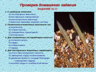 Проверка домашнего задания ЗАДАНИЕ № 1: 1. К хордовым относят: а) теплокровн