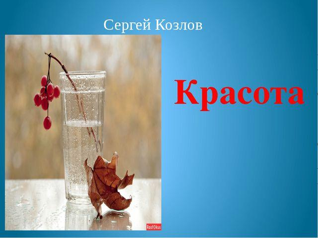 Сергей Козлов Красота