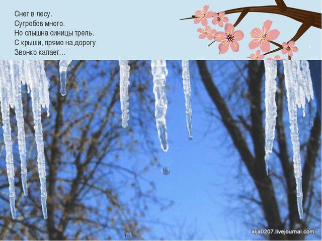 Снег в лесу. Сугробов много. Но слышна синицы трель. С крыши, прямо на дорогу...