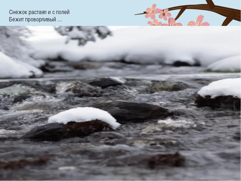 Снежок растаял и с полей Бежит проворливый …
