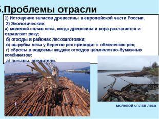 5.Проблемы отрасли 1) Истощение запасов древесины в европейской части России.