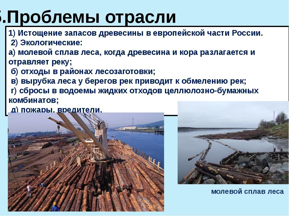 5.Проблемы отрасли 1) Истощение запасов древесины в европейской части России....