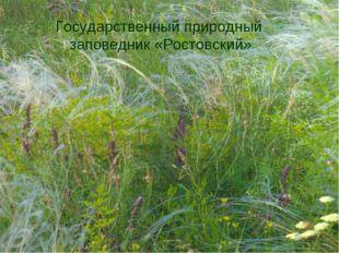 Государственный природный заповедник «Ростовский»