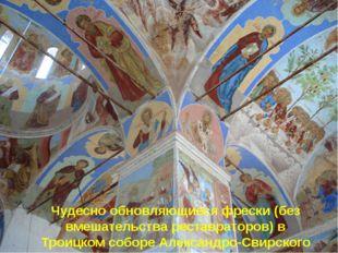 Чудесно обновляющиеся фрески (без вмешательства реставраторов) в Троицком соб