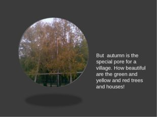 But autumn is the special pore for a village. How beautiful are the green an