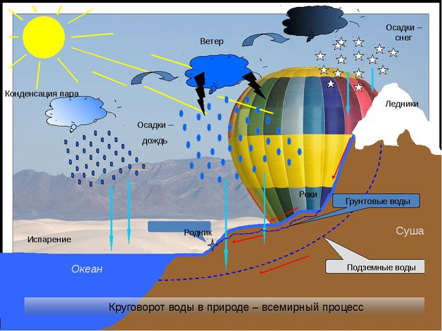 Испарение Конденсация пара Осадки – дождь Осадки – снег Ветер Круговорот вод...