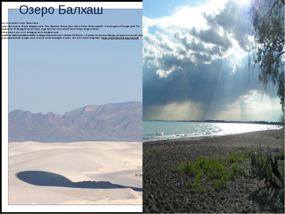 Озеро Балхаш Второе по величине озеро Казахстана. Это озеро бессточное. В нег...