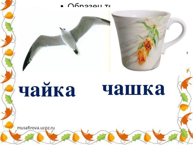 чайка чашка
