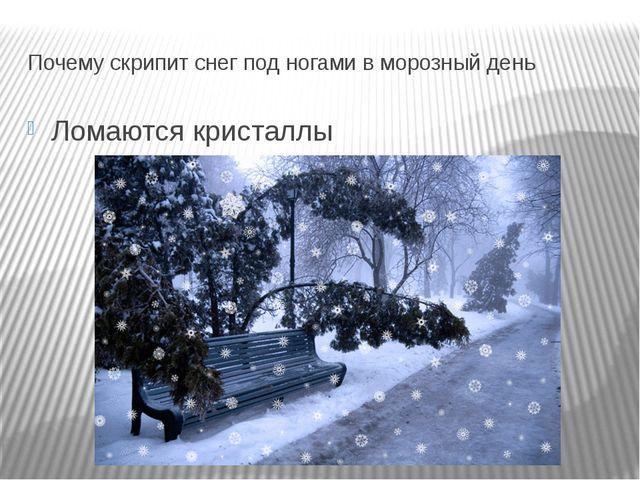 Почему скрипит снег под ногами в морозный день Ломаются кристаллы