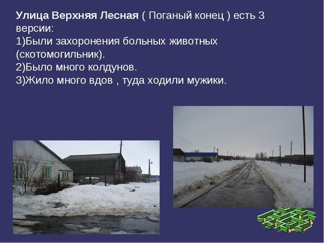 Улица Верхняя Лесная ( Поганый конец ) есть 3 версии: 1)Были захоронения боль...