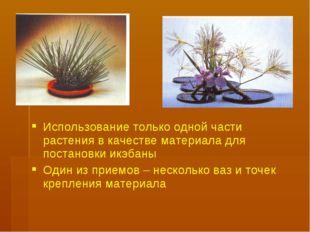 Использование только одной части растения в качестве материала для постановки