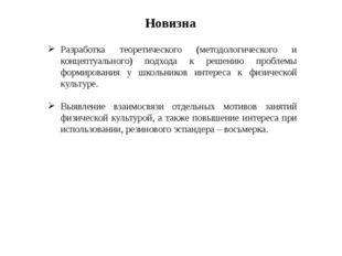 Новизна Разработка теоретического (методологического и концептуального) подхо