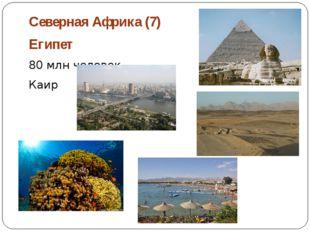 Северная Африка (7) Египет 80 млн человек Каир