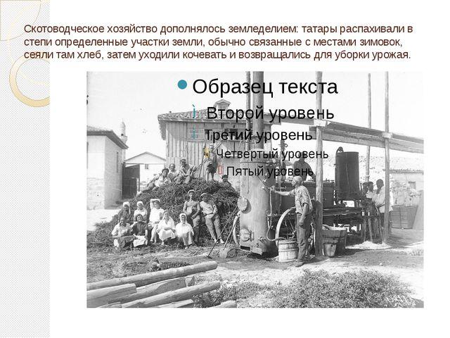 Скотоводческое хозяйство дополнялось земледелием: татары распахивали в степи...